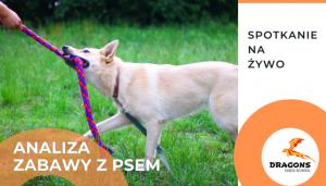 """10. 03.2021 Udział w webinarium """"Analiza zabawy z psem"""""""