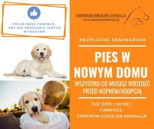 """16. 03. 2021 Udział w webinarium """"Pies w nowym domu"""""""
