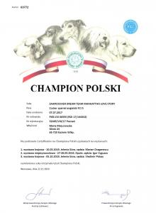 Championat Niagary